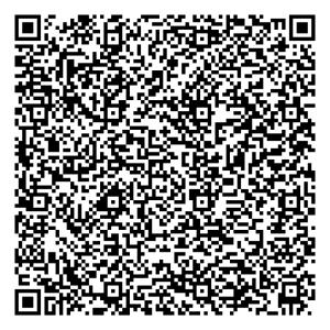 QR Viareggio il carnevale nella cartolina LARGE